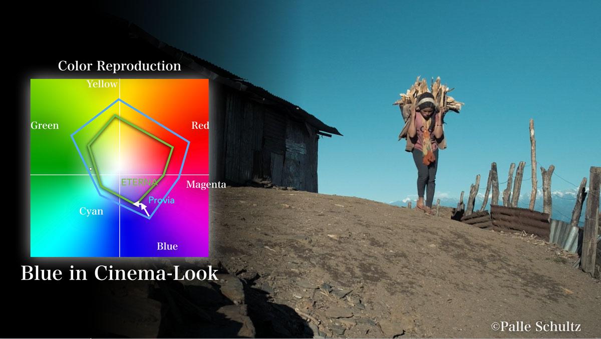The Fujifilm X-H1 Development Story Film Simulation ETERNA